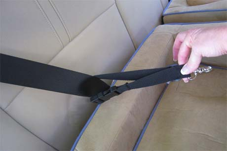 Seatbelt tether